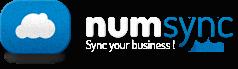 eewee-saas-Numsync-logo
