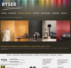 eewee-realisation-creation-site-internet-ryser-3